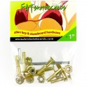 Set de Tornillos Fat Machine Gold Allen 1""
